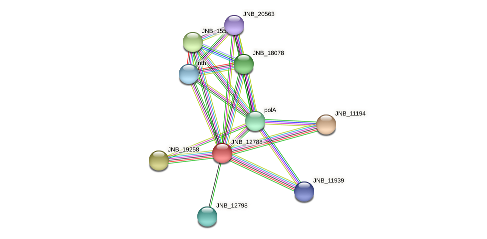 JNB_12788 protein (Janibacter sp. HTCC2649) - STRING interaction network
