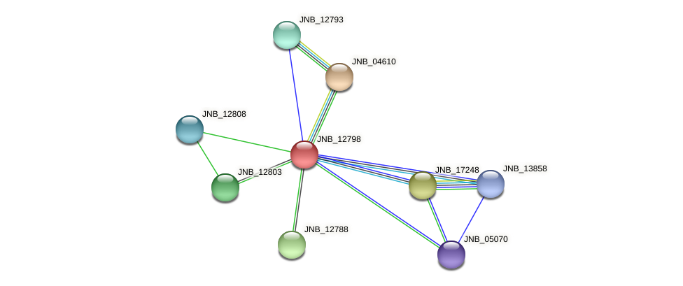JNB_12798 protein (Janibacter sp. HTCC2649) - STRING interaction network