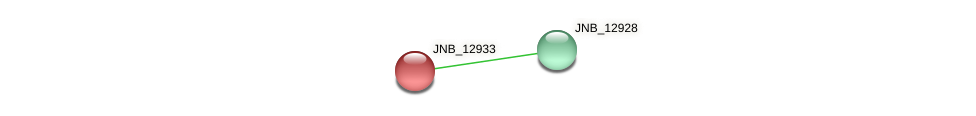 JNB_12933 protein (Janibacter sp. HTCC2649) - STRING interaction network