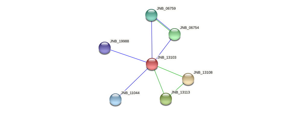 JNB_13103 protein (Janibacter sp. HTCC2649) - STRING interaction network