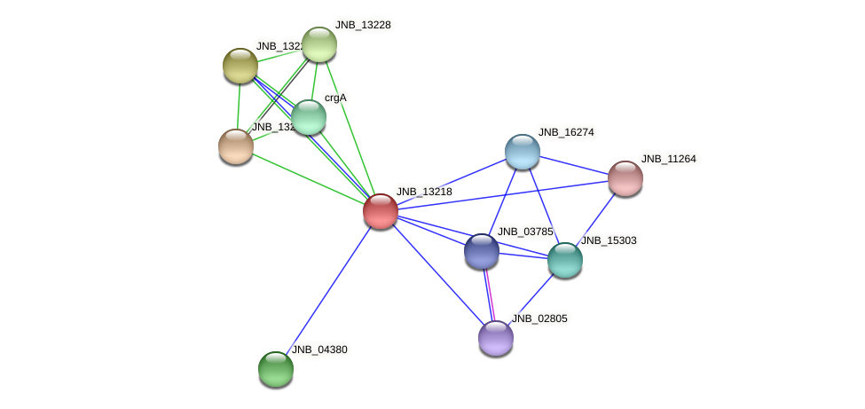 JNB_13218 protein (Janibacter sp. HTCC2649) - STRING interaction network