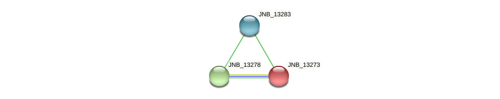 JNB_13273 protein (Janibacter sp. HTCC2649) - STRING interaction network