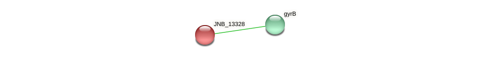 JNB_13328 protein (Janibacter sp. HTCC2649) - STRING interaction network
