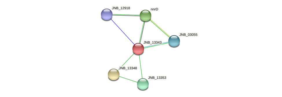 JNB_13343 protein (Janibacter sp. HTCC2649) - STRING interaction network