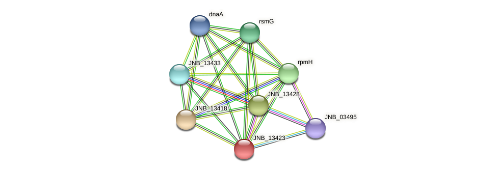 JNB_13423 protein (Janibacter sp. HTCC2649) - STRING interaction network