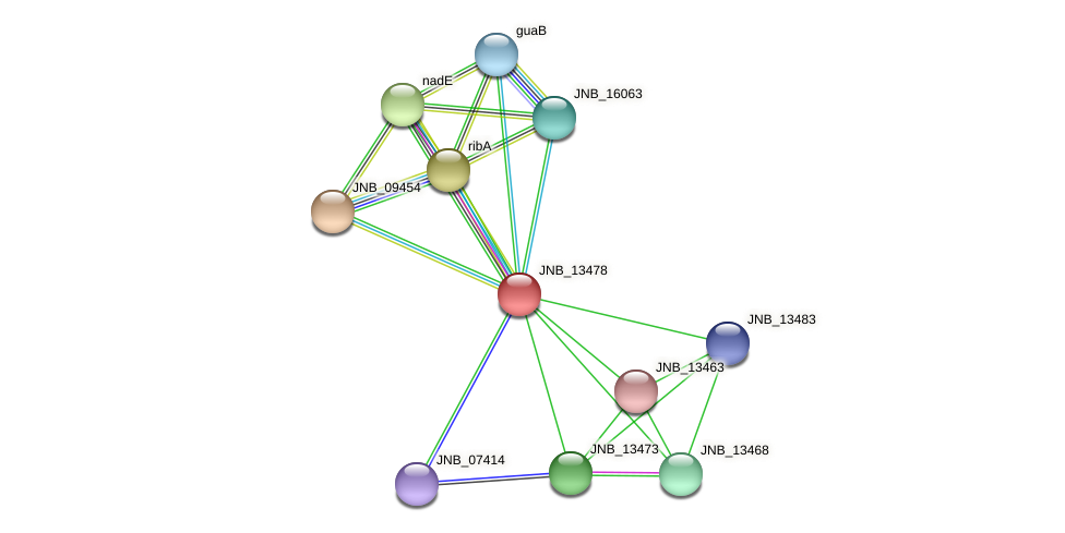 JNB_13478 protein (Janibacter sp. HTCC2649) - STRING interaction network