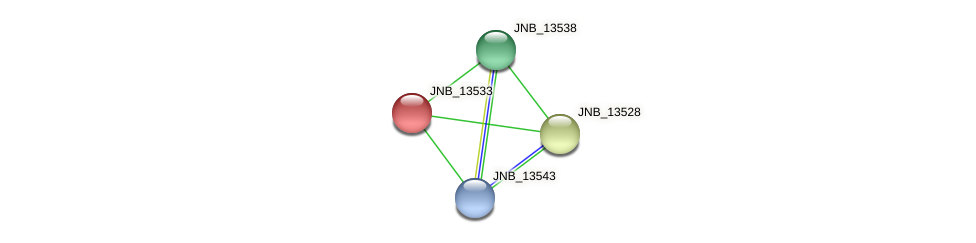 JNB_13533 protein (Janibacter sp. HTCC2649) - STRING interaction network