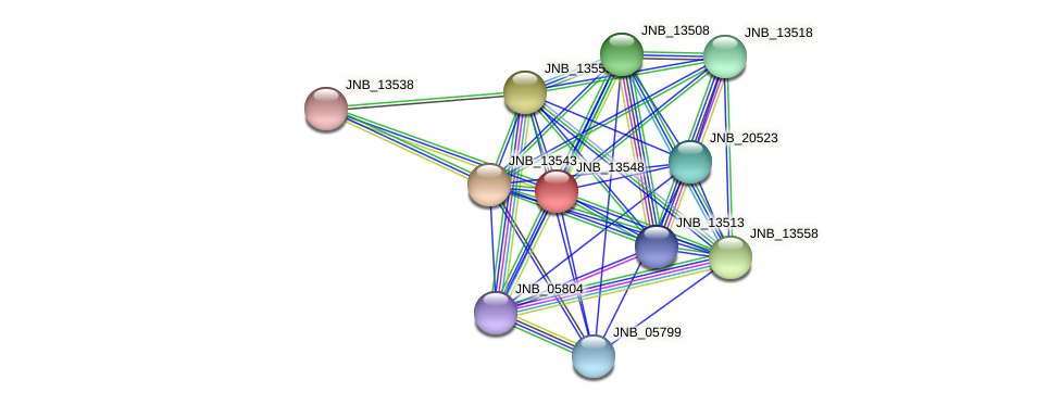 JNB_13548 protein (Janibacter sp. HTCC2649) - STRING interaction network
