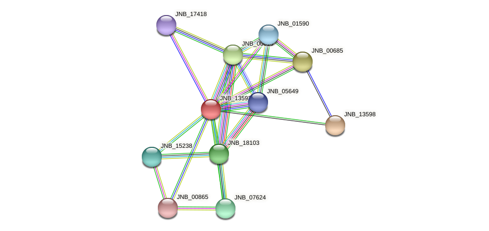 JNB_13593 protein (Janibacter sp. HTCC2649) - STRING interaction network