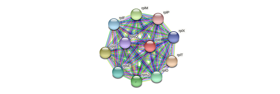 rplI protein (Janibacter sp. HTCC2649) - STRING interaction network