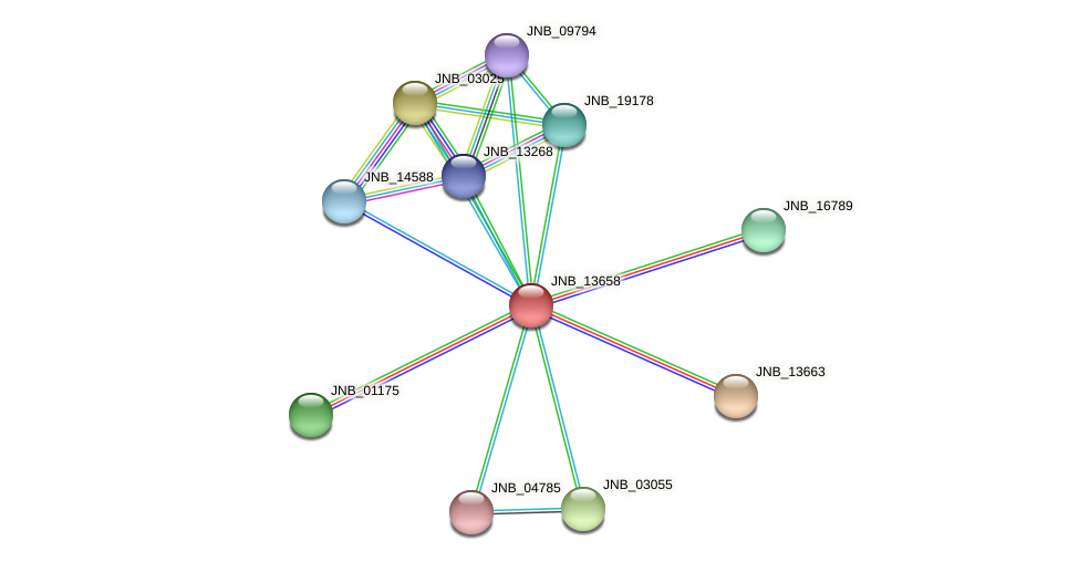 JNB_13658 protein (Janibacter sp. HTCC2649) - STRING interaction network