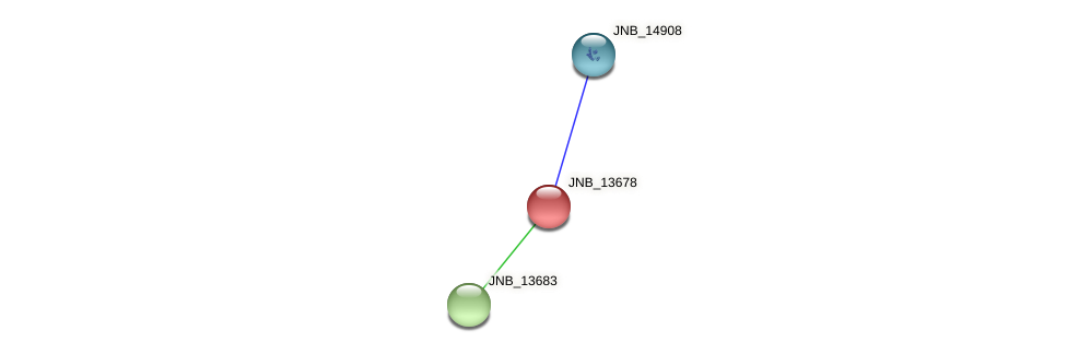 JNB_13678 protein (Janibacter sp. HTCC2649) - STRING interaction network