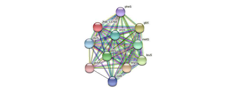 JNB_13768 protein (Janibacter sp. HTCC2649) - STRING interaction network