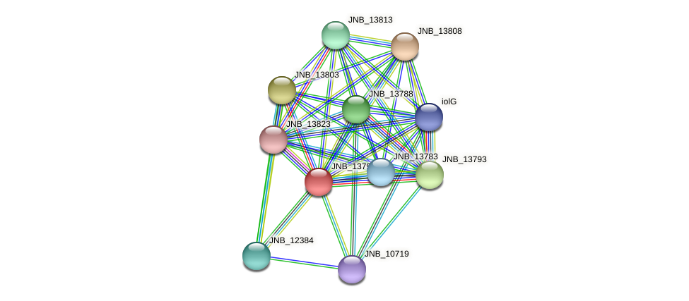 JNB_13798 protein (Janibacter sp. HTCC2649) - STRING interaction network