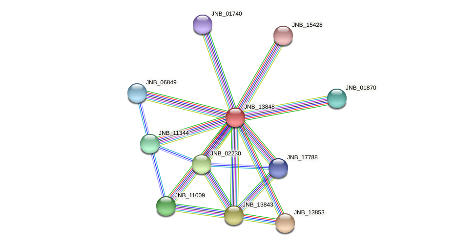 JNB_13848 protein (Janibacter sp. HTCC2649) - STRING interaction network
