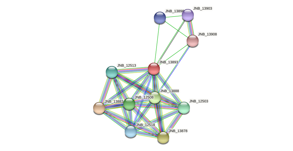 JNB_13893 protein (Janibacter sp. HTCC2649) - STRING interaction network