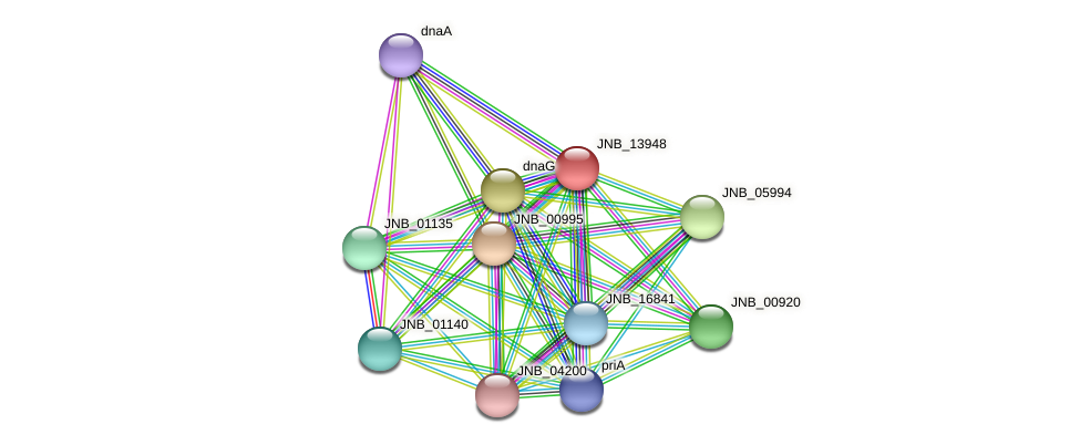 JNB_13948 protein (Janibacter sp. HTCC2649) - STRING interaction network