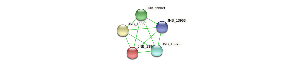 JNB_13968 protein (Janibacter sp. HTCC2649) - STRING interaction network