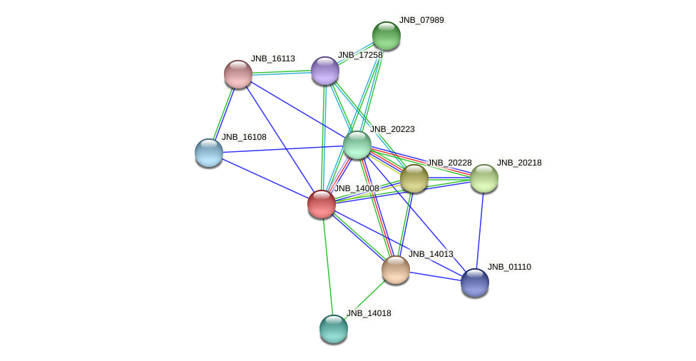 JNB_14008 protein (Janibacter sp. HTCC2649) - STRING interaction network