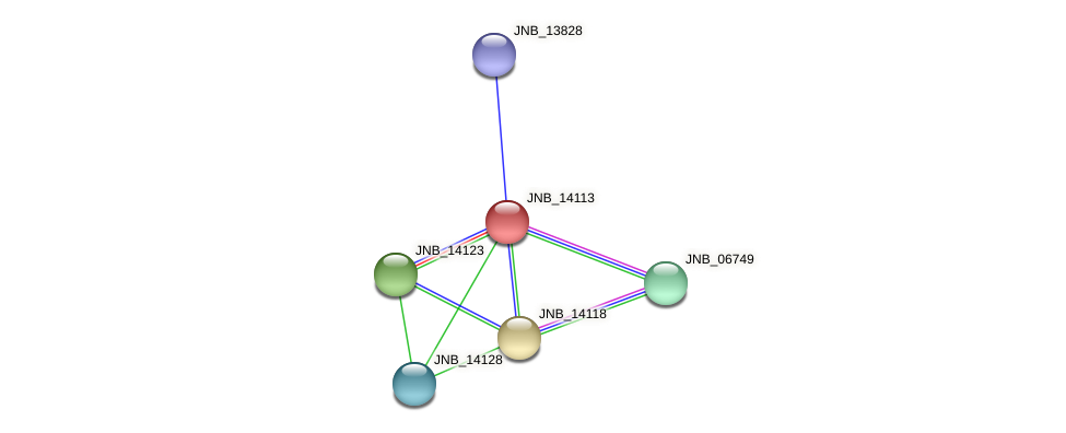JNB_14113 protein (Janibacter sp. HTCC2649) - STRING interaction network