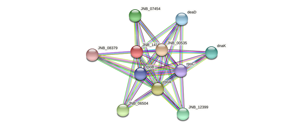 JNB_14163 protein (Janibacter sp. HTCC2649) - STRING interaction network