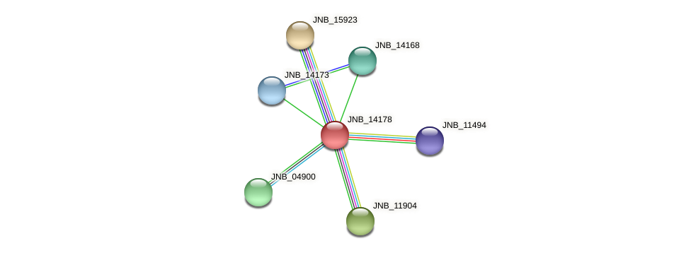 JNB_14178 protein (Janibacter sp. HTCC2649) - STRING interaction network