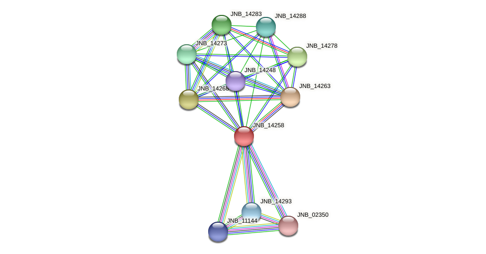 JNB_14258 protein (Janibacter sp. HTCC2649) - STRING interaction network