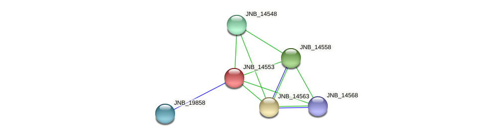 JNB_14553 protein (Janibacter sp. HTCC2649) - STRING interaction network
