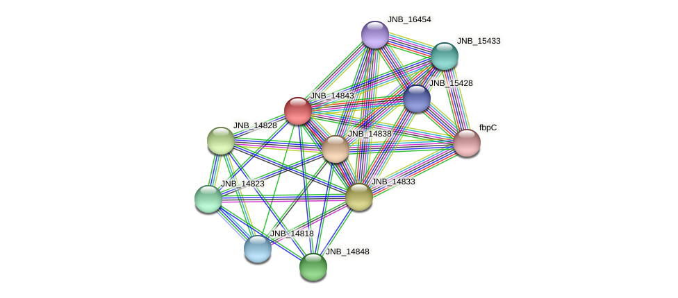 JNB_14843 protein (Janibacter sp. HTCC2649) - STRING interaction network