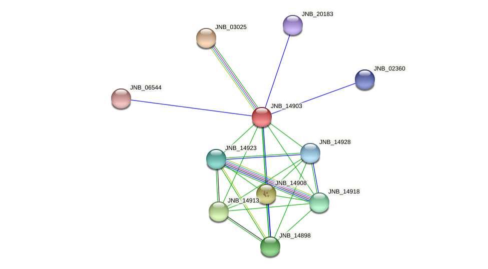 JNB_14903 protein (Janibacter sp. HTCC2649) - STRING interaction network