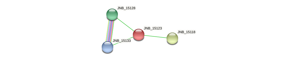 JNB_15123 protein (Janibacter sp. HTCC2649) - STRING interaction network