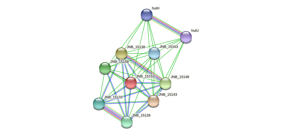 JNB_15153 protein (Janibacter sp. HTCC2649) - STRING interaction network