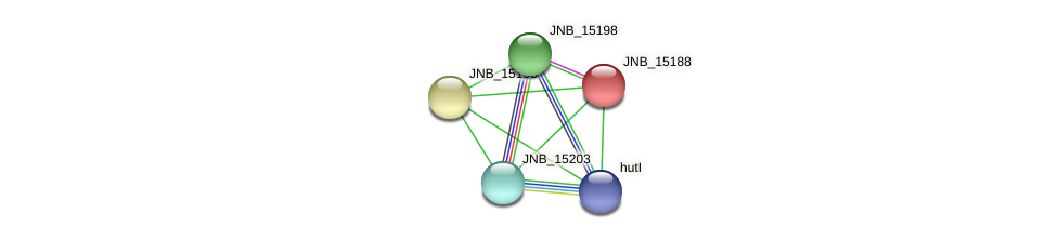JNB_15188 protein (Janibacter sp. HTCC2649) - STRING interaction network