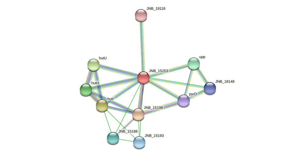 JNB_15203 protein (Janibacter sp. HTCC2649) - STRING interaction network