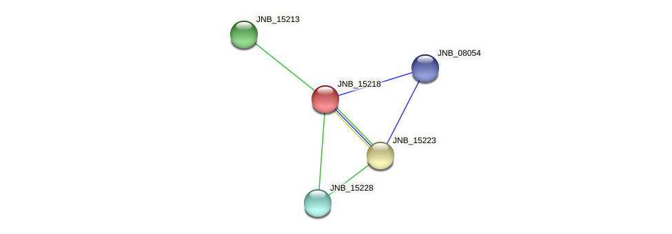 JNB_15218 protein (Janibacter sp. HTCC2649) - STRING interaction network