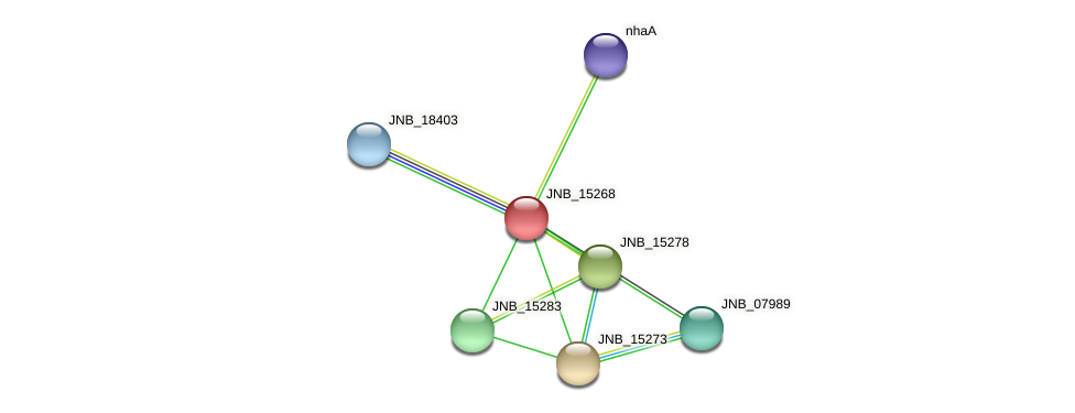 JNB_15268 protein (Janibacter sp. HTCC2649) - STRING interaction network