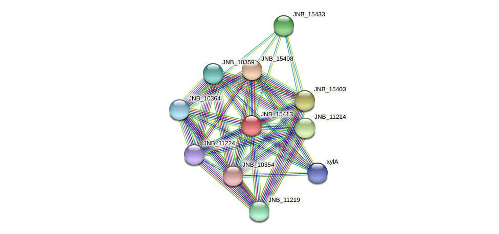 JNB_15413 protein (Janibacter sp. HTCC2649) - STRING interaction network