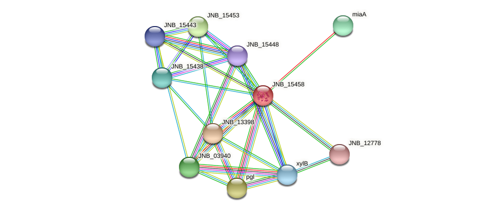 JNB_15458 protein (Janibacter sp. HTCC2649) - STRING interaction network
