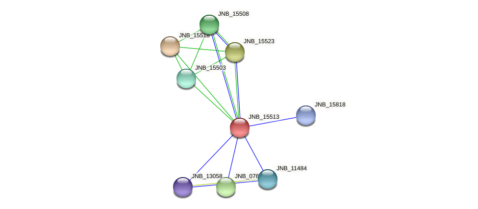 JNB_15513 protein (Janibacter sp. HTCC2649) - STRING interaction network