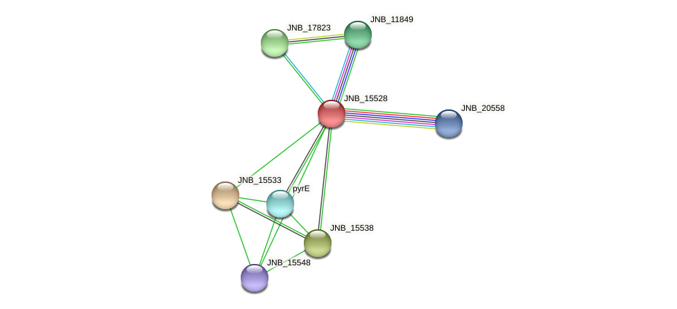 JNB_15528 protein (Janibacter sp. HTCC2649) - STRING interaction network