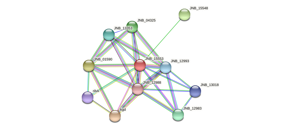 JNB_15553 protein (Janibacter sp. HTCC2649) - STRING interaction network