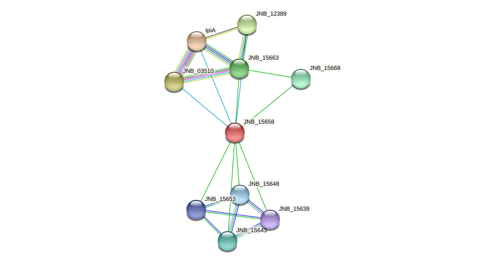 JNB_15658 protein (Janibacter sp. HTCC2649) - STRING interaction network