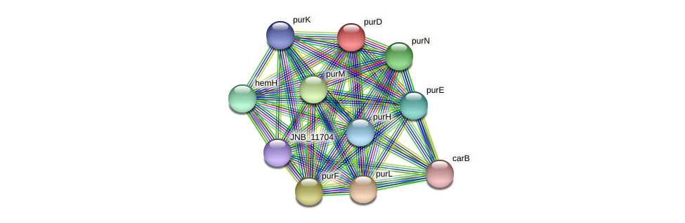 purD protein (Janibacter sp. HTCC2649) - STRING interaction network