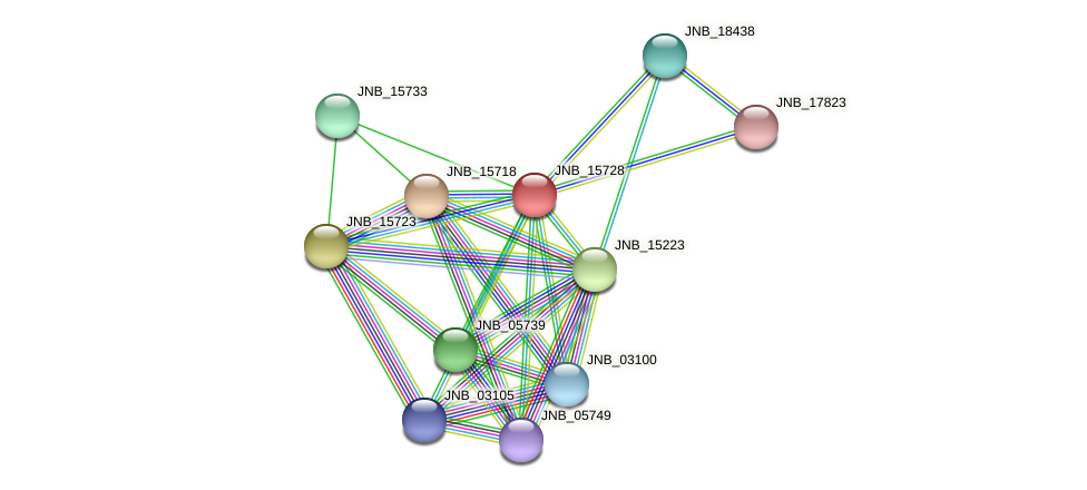 JNB_15728 protein (Janibacter sp. HTCC2649) - STRING interaction network