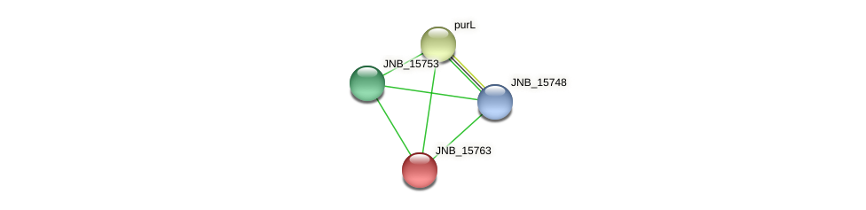 JNB_15763 protein (Janibacter sp. HTCC2649) - STRING interaction network