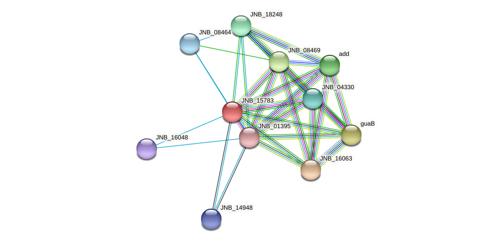 JNB_15783 protein (Janibacter sp. HTCC2649) - STRING interaction network