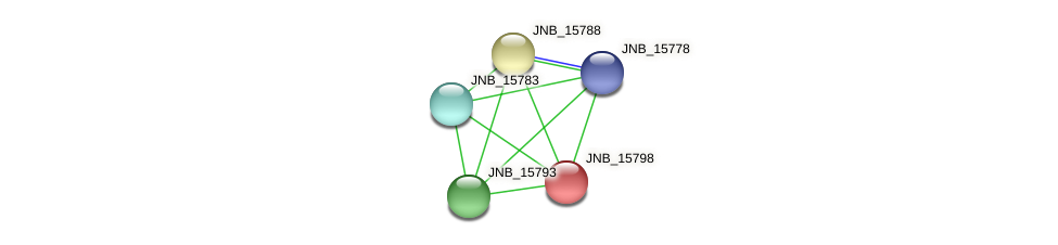 JNB_15798 protein (Janibacter sp. HTCC2649) - STRING interaction network