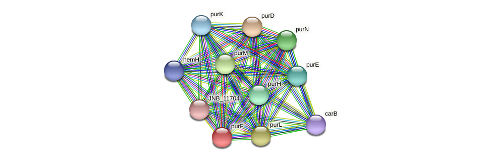 purF protein (Janibacter sp. HTCC2649) - STRING interaction network