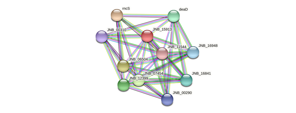 JNB_15913 protein (Janibacter sp. HTCC2649) - STRING interaction network