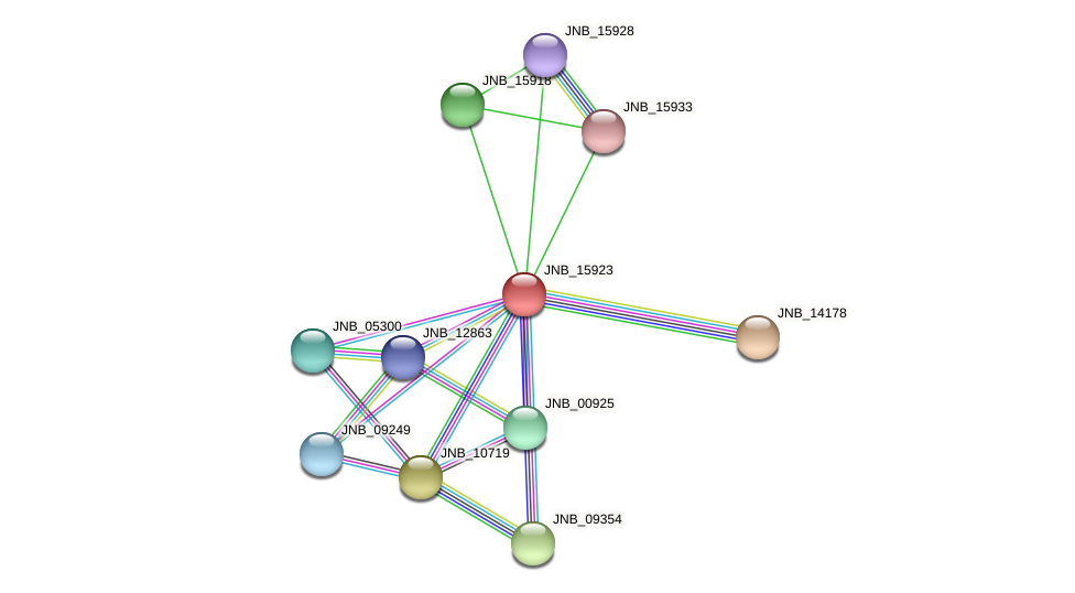 JNB_15923 protein (Janibacter sp. HTCC2649) - STRING interaction network
